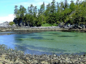 Vancouver Island Anchorages - Cape Beale