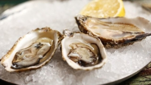 Pacific oysters on the half shell